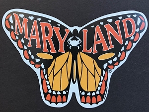 OutaChesapeake® - MARYLAND Butterfly