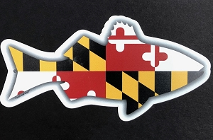 Fish Outa Maryland Magnet and Decal