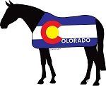 Outa Colorado™ Horse