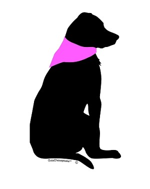 Outa Chesapeake® - Dog in Pink