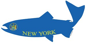 Fish Outa New York